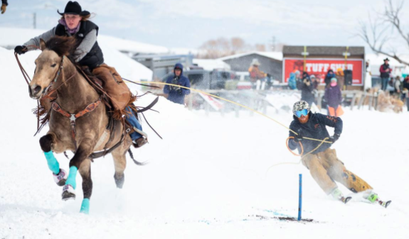 skijoring in the winter with horses