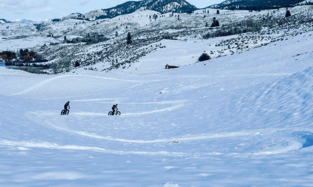 People riding Fat bikes on snow trail